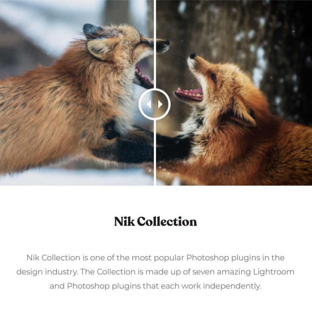 Nik Collection  Nik Collection is one of the most popular Photoshop plugins in the design industry. The Collection is made up of seven amazing Lightroom and Photoshop plugins that each work independently.
