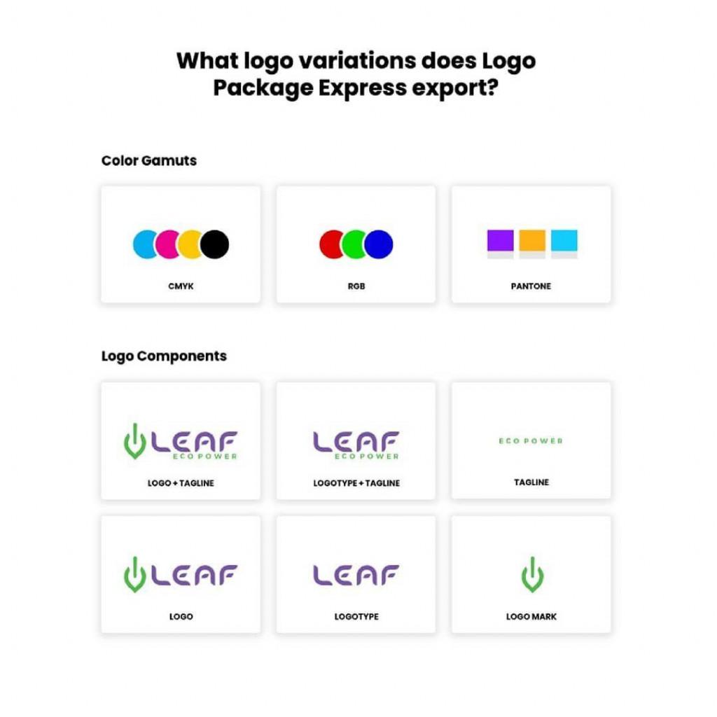 What logo variations does Logo Pockoge Express export?